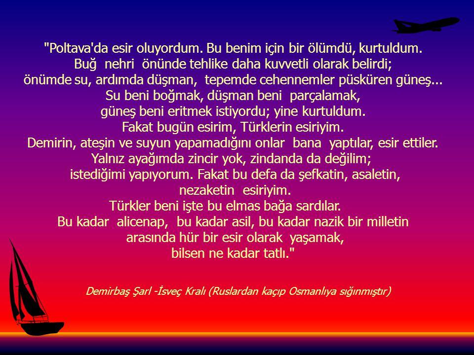 Türk; yıldırımdır, kasırgadır, dünyayı aydınlatan güneştir. HAYRETTİN ERTEKİN