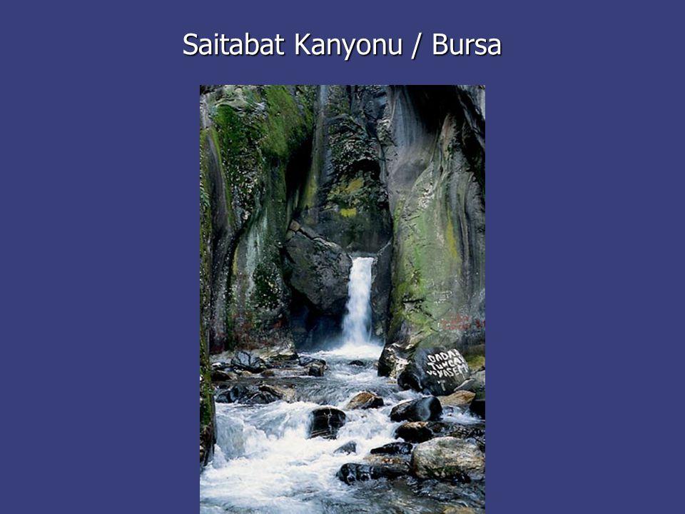 Saitabat Kanyonu / Bursa