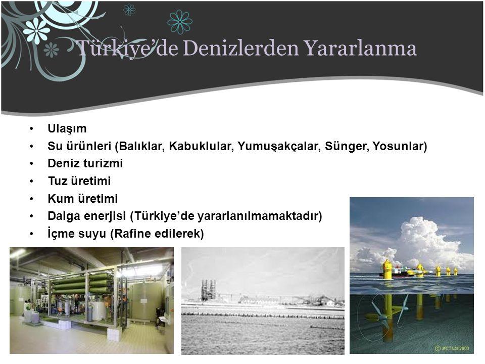 Türkiye'de Denizlerden Yararlanma Ulaşım Su ürünleri (Balıklar, Kabuklular, Yumuşakçalar, Sünger, Yosunlar) Deniz turizmi Tuz üretimi Kum üretimi Dalg