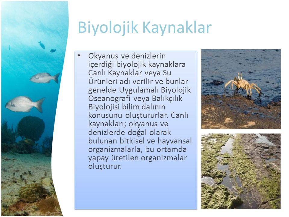 Biyolojik Kaynaklar Okyanus ve denizlerin içerdiği biyolojik kaynaklara Canlı Kaynaklar veya Su Ürünleri adı verilir ve bunlar genelde Uygulamalı Biyo
