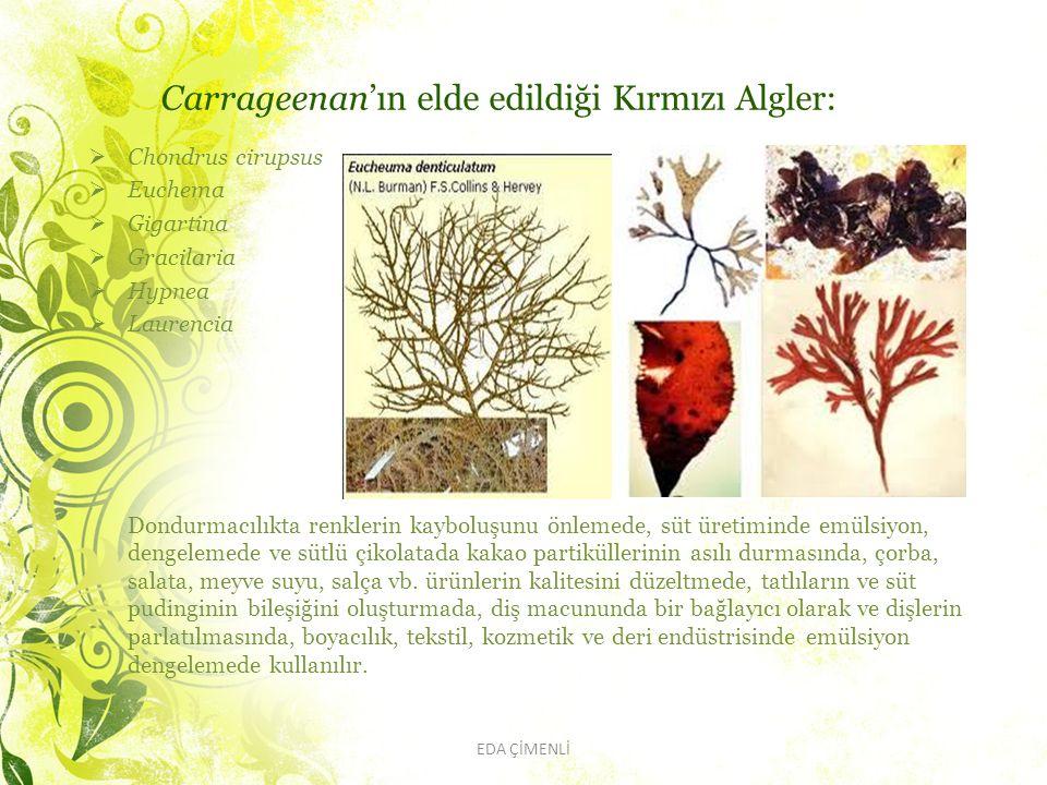Carrageenan'ın elde edildiği Kırmızı Algler:  Chondrus cirupsus  Euchema  Gigartina  Gracilaria  Hypnea  Laurencia Dondurmacılıkta renklerin kay