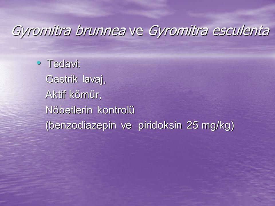 Psilocybe cubensis ve Gymnopilus spectabili Toksik madde: psilosibin (santral etkili indol).