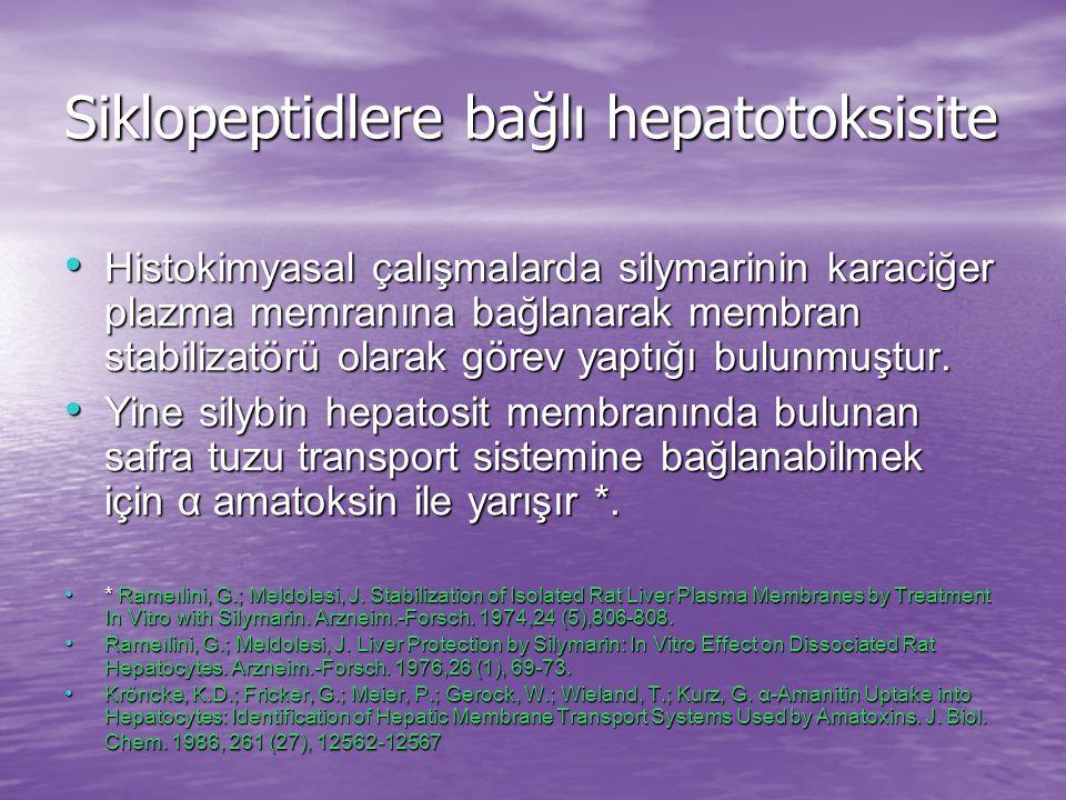 Siklopeptidlere bağlı hepatotoksisite Histokimyasal çalışmalarda silymarinin karaciğer plazma memranına bağlanarak membran stabilizatörü olarak görev yaptığı bulunmuştur.