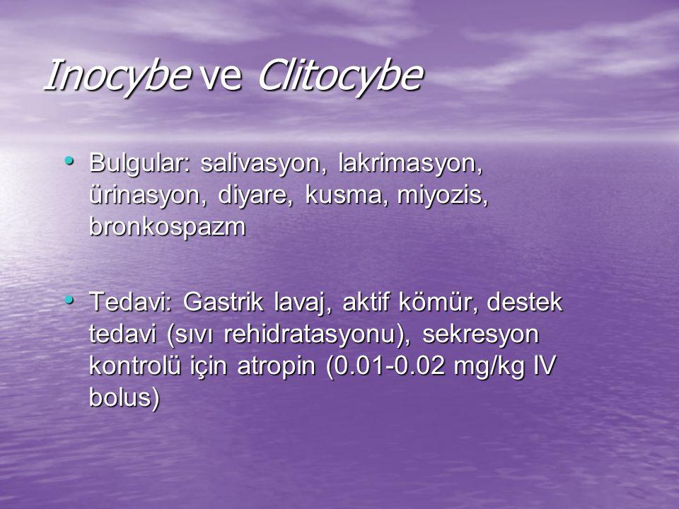 Inocybe ve Clitocybe Bulgular: salivasyon, lakrimasyon, ürinasyon, diyare, kusma, miyozis, bronkospazm Bulgular: salivasyon, lakrimasyon, ürinasyon, diyare, kusma, miyozis, bronkospazm Tedavi: Gastrik lavaj, aktif kömür, destek tedavi (sıvı rehidratasyonu), sekresyon kontrolü için atropin (0.01-0.02 mg/kg IV bolus) Tedavi: Gastrik lavaj, aktif kömür, destek tedavi (sıvı rehidratasyonu), sekresyon kontrolü için atropin (0.01-0.02 mg/kg IV bolus)