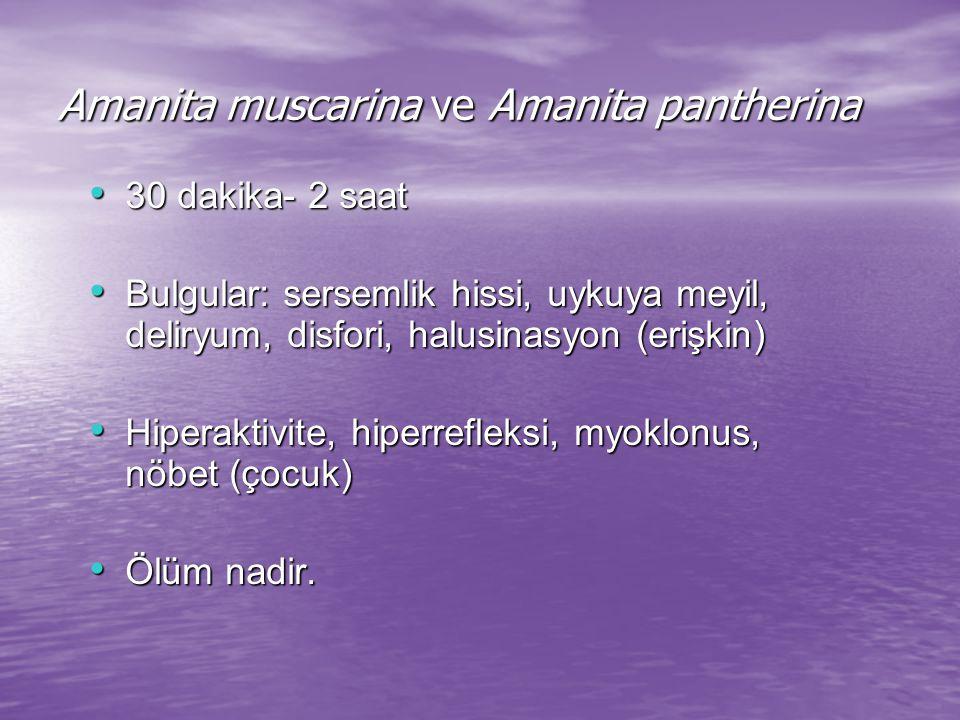 Amanita muscarina ve Amanita pantherina 30 dakika- 2 saat 30 dakika- 2 saat Bulgular: sersemlik hissi, uykuya meyil, deliryum, disfori, halusinasyon (erişkin) Bulgular: sersemlik hissi, uykuya meyil, deliryum, disfori, halusinasyon (erişkin) Hiperaktivite, hiperrefleksi, myoklonus, nöbet (çocuk) Hiperaktivite, hiperrefleksi, myoklonus, nöbet (çocuk) Ölüm nadir.