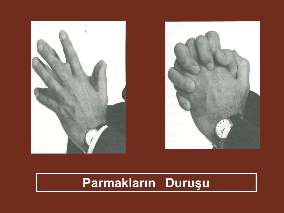 Parmakların Duruşu