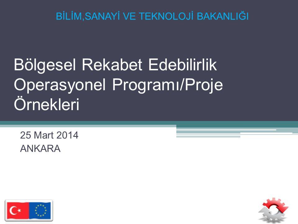 Bölgesel Rekabet Edebilirlik Operasyonel Programı/Proje Örnekleri 25 Mart 2014 ANKARA BİLİM,SANAYİ VE TEKNOLOJİ BAKANLIĞI