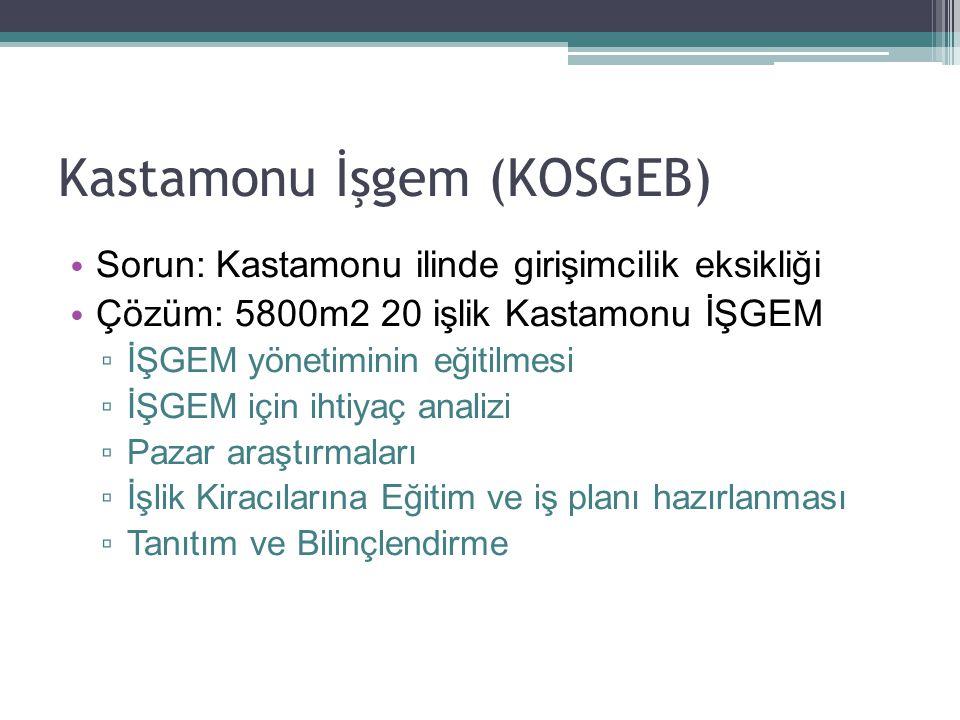 Kastamonu İşgem (KOSGEB) Sorun: Kastamonu ilinde girişimcilik eksikliği Çözüm: 5800m2 20 işlik Kastamonu İŞGEM ▫ İŞGEM yönetiminin eğitilmesi ▫ İŞGEM