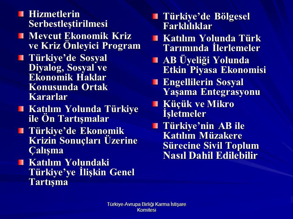 Türkiye-Avrupa Birliği Karma İstişare Komitesi Hizmetlerin Serbestleştirilmesi Mevcut Ekonomik Kriz ve Kriz Önleyici Program Türkiye'de Sosyal Diyalog, Sosyal ve Ekonomik Haklar Konusunda Ortak Kararlar Katılım Yolunda Türkiye ile Ön Tartışmalar Türkiye'de Ekonomik Krizin Sonuçları Üzerine Çalışma Katılım Yolundaki Türkiye'ye İlişkin Genel Tartışma Türkiye'de Bölgesel Farklılıklar Katılım Yolunda Türk Tarımında İlerlemeler AB Üyeliği Yolunda Etkin Piyasa Ekonomisi Engellilerin Sosyal Yaşama Entegrasyonu Küçük ve Mikro İşletmeler Türkiye'nin AB ile Katılım Müzakere Sürecin e Sivil Toplum Nasıl Dahil Edilebilir