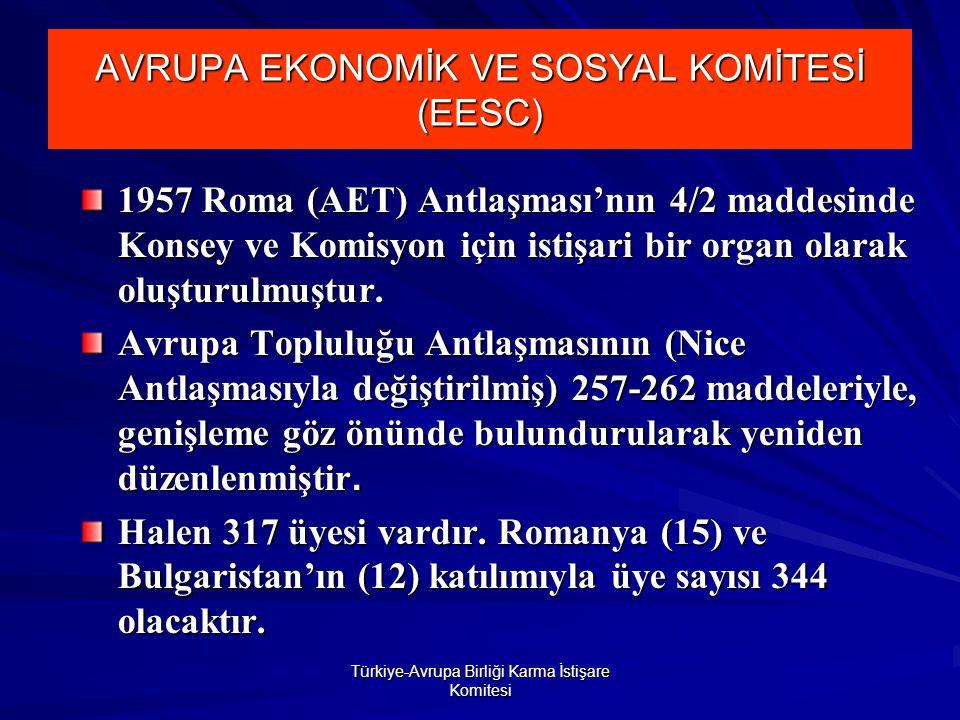 Türkiye-Avrupa Birliği Karma İstişare Komitesi AVRUPA EKONOMİK VE SOSYAL KOMİTESİ (EESC) 1957 Roma (AET) Antlaşması'nın 4/2 maddesinde Konsey ve Komisyon için istişari bir organ olarak oluşturulmuştur.