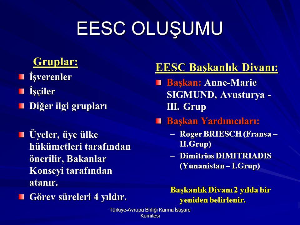 Türkiye-Avrupa Birliği Karma İstişare Komitesi AB KATILIM GÖRÜŞMELERİ İÇİN İSTİŞARE ORGANI ÖNERİSİ Türkiye-AB KİK Involving organized civil society in Turkey s EU accession negotiation process isimli bir raporu onayladı.
