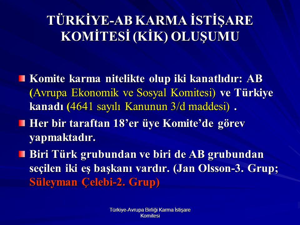 Türkiye-Avrupa Birliği Karma İstişare Komitesi TÜRKİYE-AB KARMA İSTİŞARE KOMİTESİ (KİK) OLUŞUMU Komite karma nitelikte olup iki kanatlıdır: AB (Avrupa Ekonomik ve Sosyal Komitesi) ve Türkiye kanadı (4641 sayılı Kanunun 3/d maddesi).