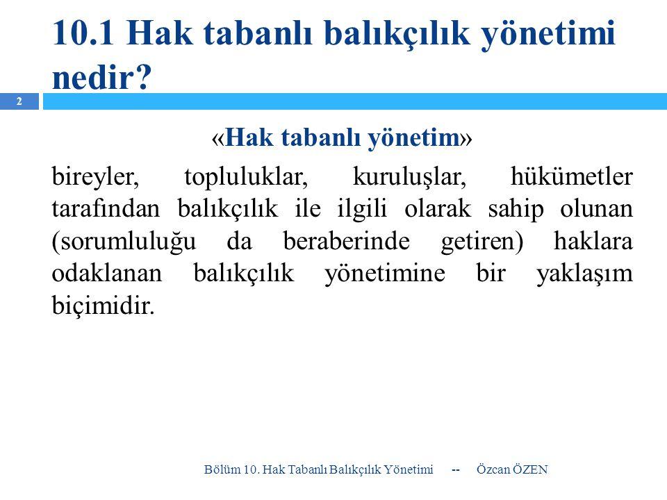 10.1 Hak tabanlı balıkçılık yönetimi nedir.