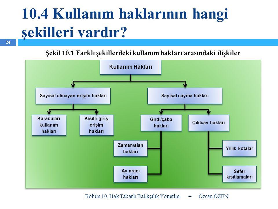 10.4 Kullanım haklarının hangi şekilleri vardır? -- Özcan ÖZEN Bölüm 10. Hak Tabanlı Balıkçılık Yönetimi 24 Kullanım Hakları Sayısal olmayan erişim ha