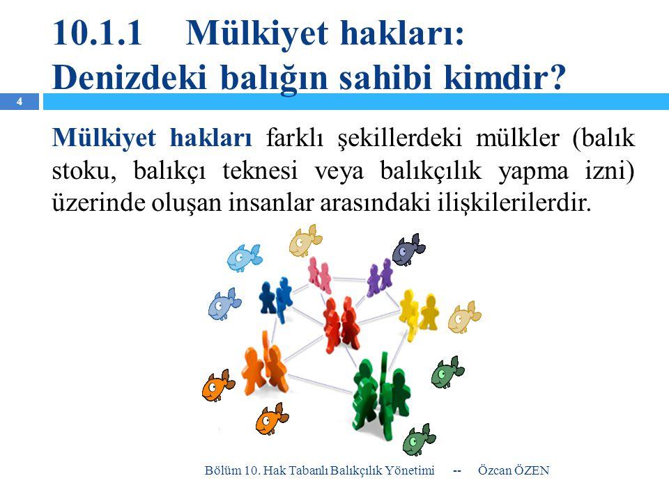 10.1.1Mülkiyet hakları: Denizdeki balığın sahibi kimdir? Mülkiyet hakları farklı şekillerdeki mülkler (balık stoku, balıkçı teknesi veya balıkçılık ya