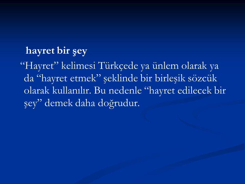 """hayret bir şey """"Hayret"""" kelimesi Türkçede ya ünlem olarak ya da """"hayret etmek"""" şeklinde bir birleşik sözcük olarak kullanılır. Bu nedenle """"hayret edil"""