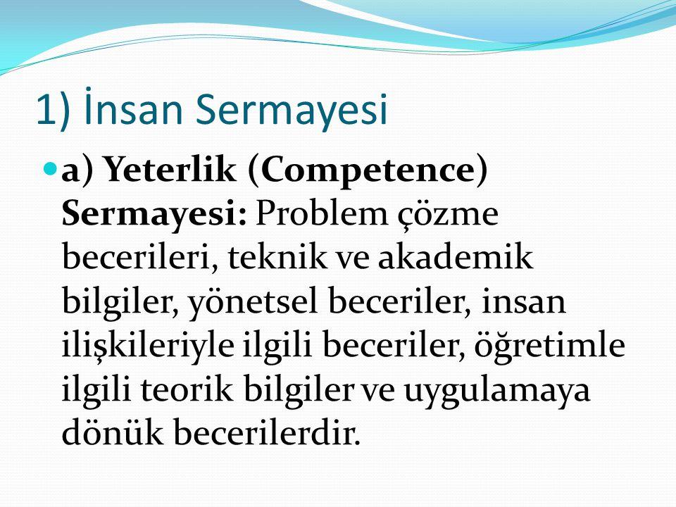 1) İnsan Sermayesi a) Yeterlik (Competence) Sermayesi: Problem çözme becerileri, teknik ve akademik bilgiler, yönetsel beceriler, insan ilişkileriyle