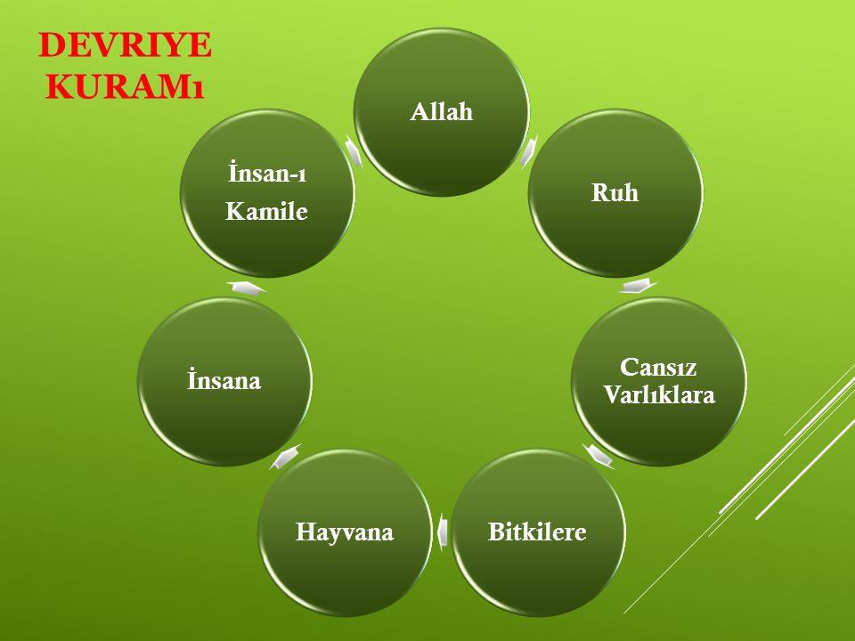 DEVRIYE KURAMı AllahRuh Cansız Varlıklara BitkilereHayvana İ nsana İ nsan-ı Kamile