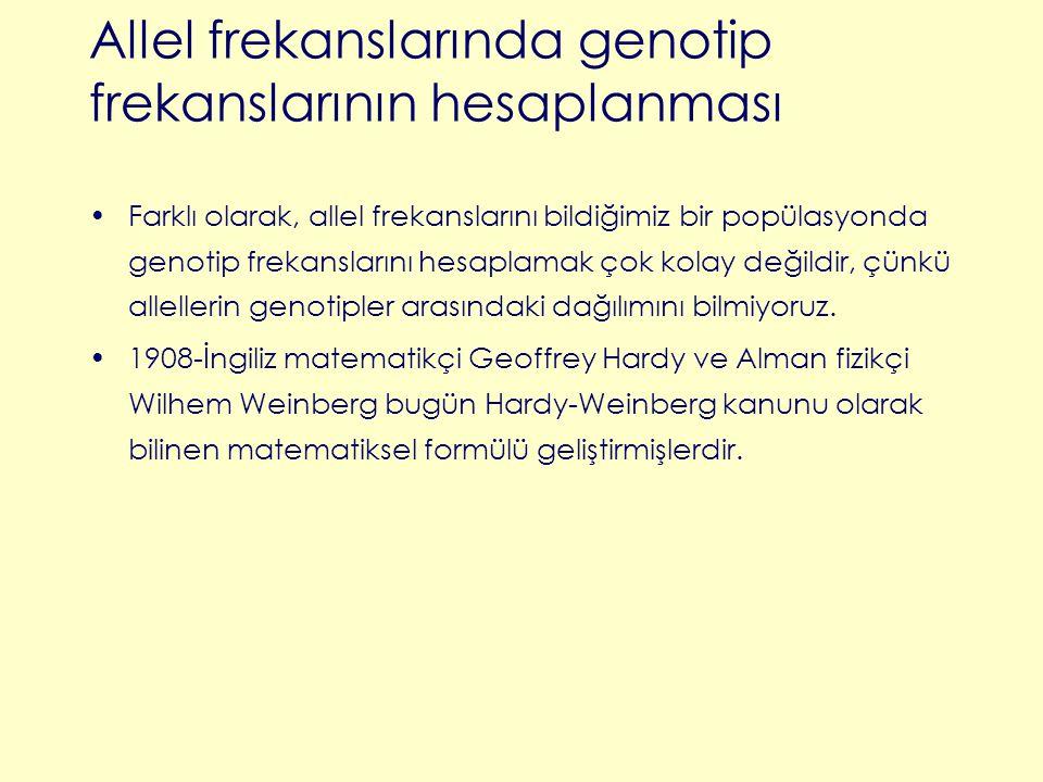 Farklı olarak, allel frekanslarını bildiğimiz bir popülasyonda genotip frekanslarını hesaplamak çok kolay değildir, çünkü allellerin genotipler arasın