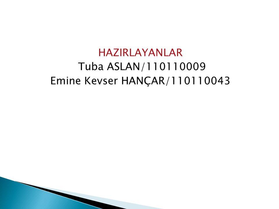 HAZIRLAYANLAR Tuba ASLAN/110110009 Emine Kevser HANÇAR/110110043
