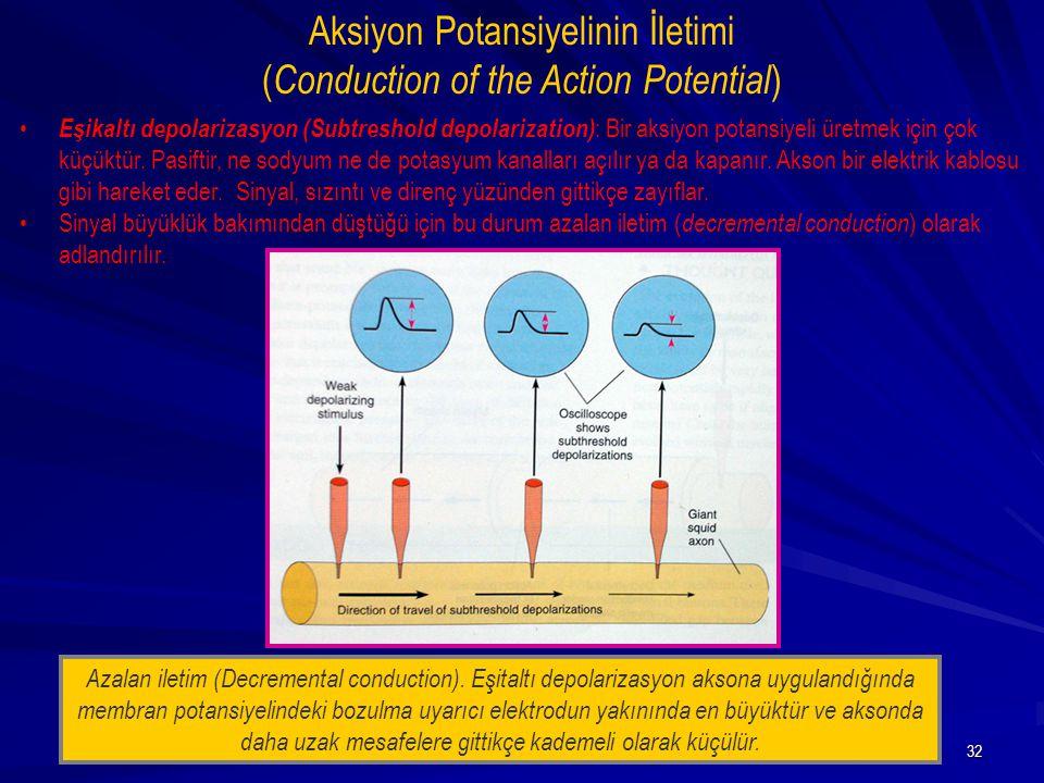 32 Eşikaltı depolarizasyon (Subtreshold depolarization) : Bir aksiyon potansiyeli üretmek için çok küçüktür. Pasiftir, ne sodyum ne de potasyum kanall