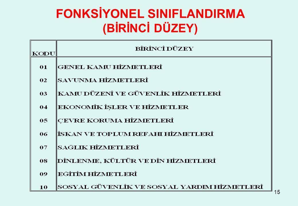15 FONKSİYONEL SINIFLANDIRMA (BİRİNCİ DÜZEY)