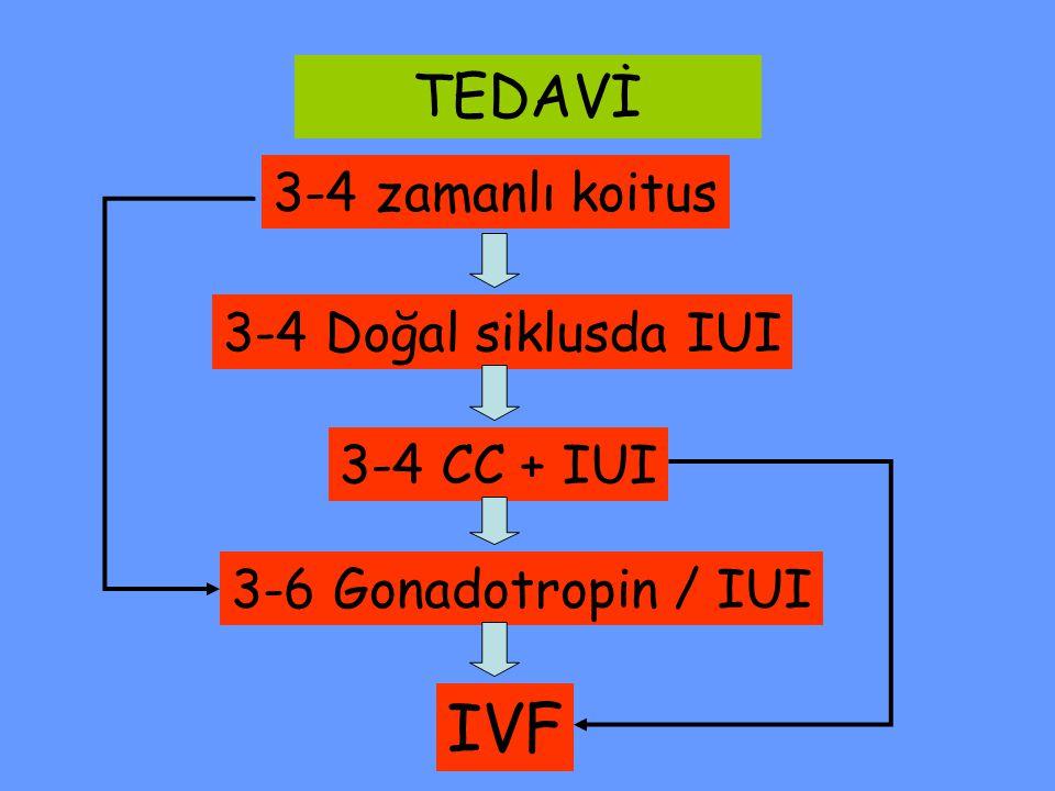 3-4 zamanlı koitus 3-4 Doğal siklusda IUI 3-4 CC + IUI 3-6 Gonadotropin / IUI IVF TEDAVİ
