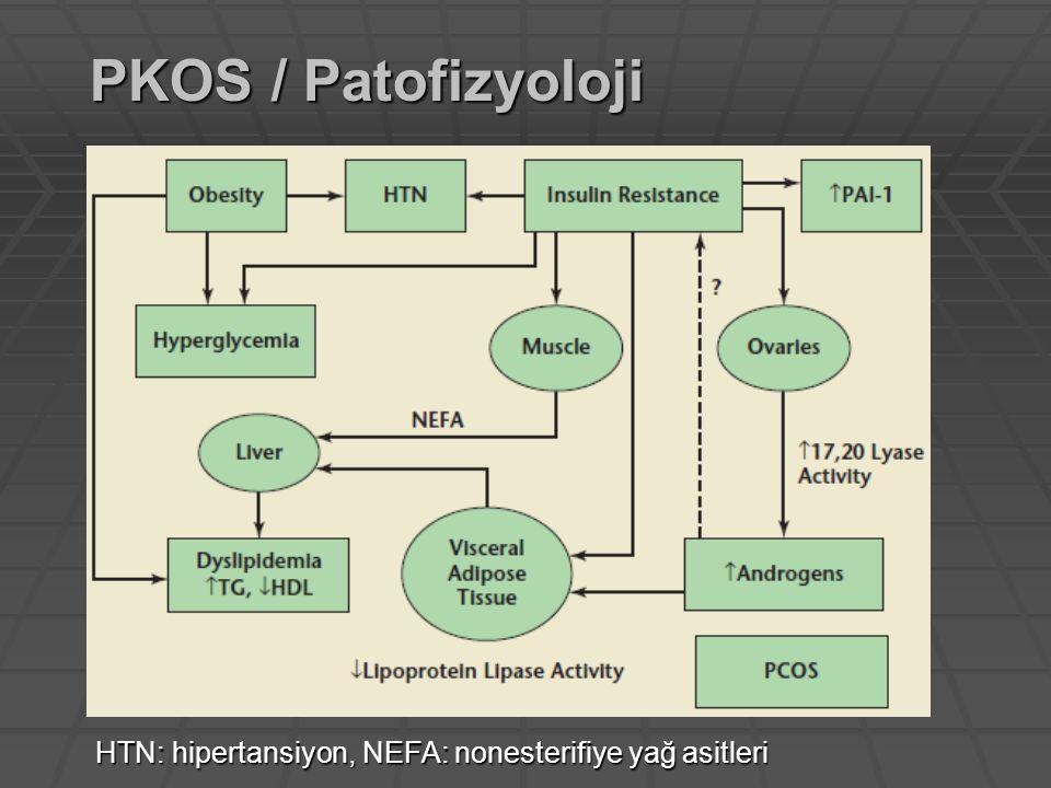 HTN: hipertansiyon, NEFA: nonesterifiye yağ asitleri PKOS / Patofizyoloji