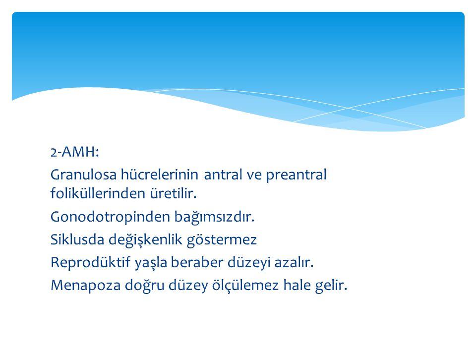 2-AMH: Granulosa hücrelerinin antral ve preantral foliküllerinden üretilir.
