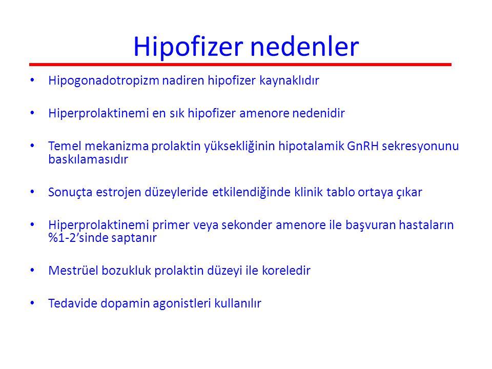 Hipofizer nedenler Hipogonadotropizm nadiren hipofizer kaynaklıdır Hiperprolaktinemi en sık hipofizer amenore nedenidir Temel mekanizma prolaktin yüks