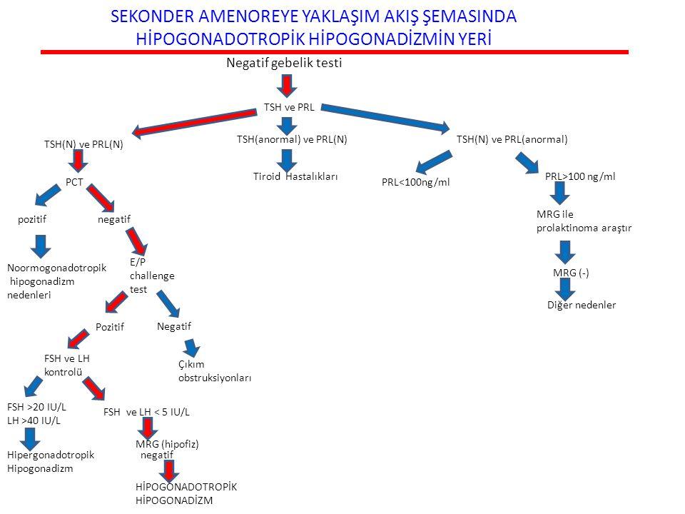 SEKONDER AMENOREYE YAKLAŞIM AKIŞ ŞEMASINDA HİPOGONADOTROPİK HİPOGONADİZMİN YERİ Negatif gebelik testi TSH(anormal) ve PRL(N) TSH(N) ve PRL(N) TSH(N) v