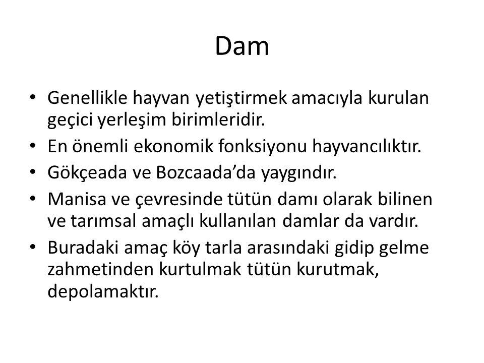 Dam Genellikle hayvan yetiştirmek amacıyla kurulan geçici yerleşim birimleridir. En önemli ekonomik fonksiyonu hayvancılıktır. Gökçeada ve Bozcaada'da