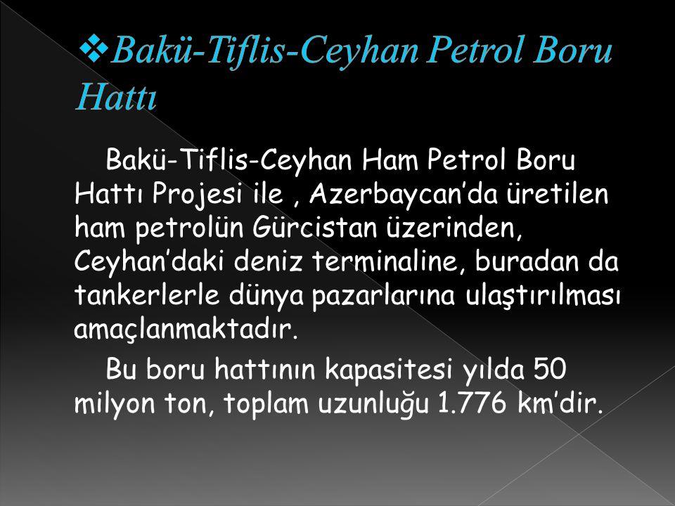 Bakü-Tiflis-Ceyhan Ham Petrol Boru Hattı Projesi ile, Azerbaycan'da üretilen ham petrolün Gürcistan üzerinden, Ceyhan'daki deniz terminaline, buradan