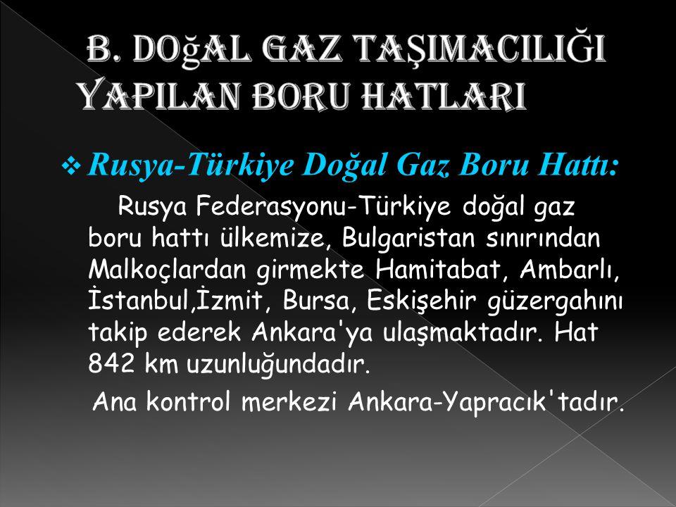  Rusya-Türkiye Doğal Gaz Boru Hattı: Rusya Federasyonu-Türkiye doğal gaz boru hattı ülkemize, Bulgaristan sınırından Malkoçlardan girmekte Hamitabat,