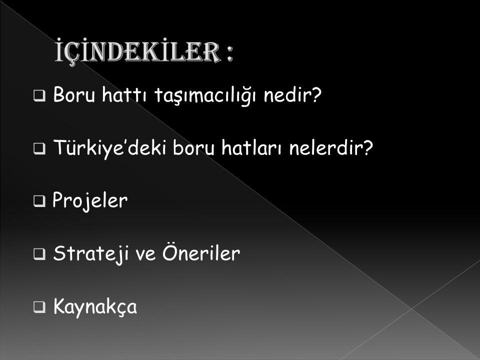  Boru hattı taşımacılığı nedir?  Türkiye'deki boru hatları nelerdir?  Projeler  Strateji ve Öneriler  Kaynakça
