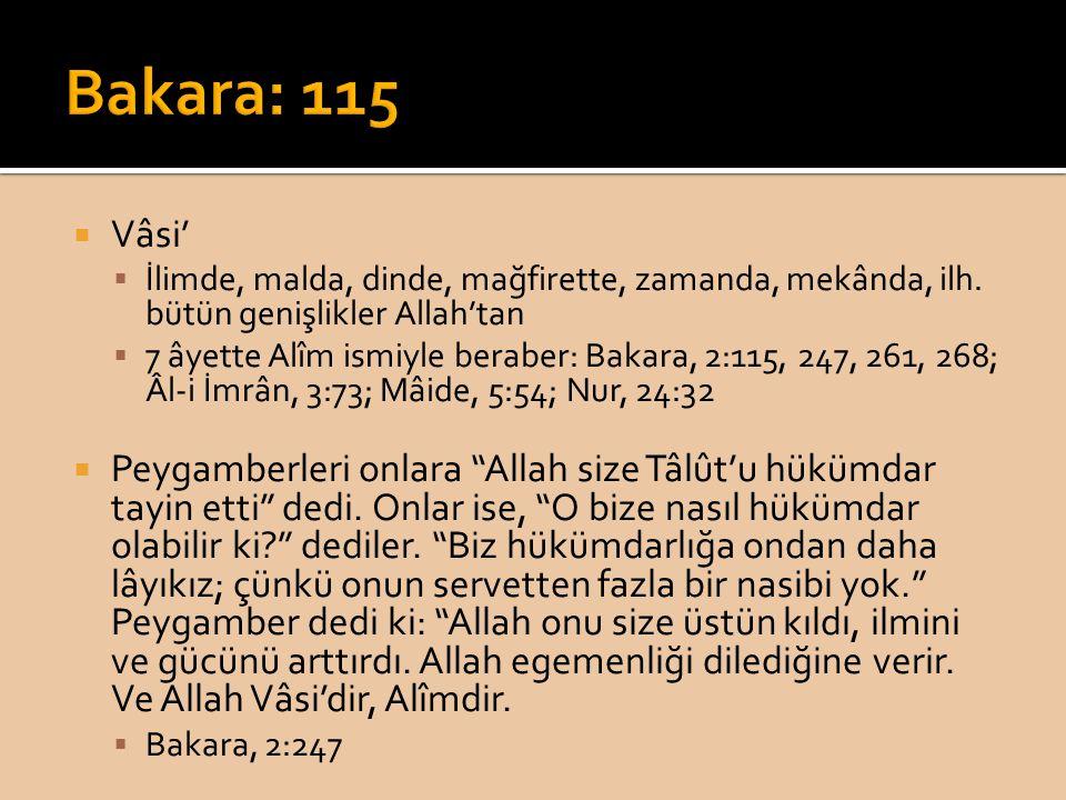  Vâsi'  İlimde, malda, dinde, mağfirette, zamanda, mekânda, ilh. bütün genişlikler Allah'tan  7 âyette Alîm ismiyle beraber: Bakara, 2:115, 247, 26