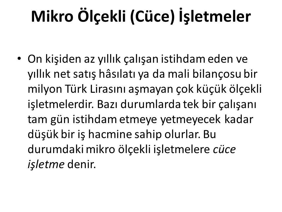 Mikro Ölçekli (Cüce) İşletmeler On kişiden az yıllık çalışan istihdam eden ve yıllık net satış hâsılatı ya da mali bilançosu bir milyon Türk Lirasını