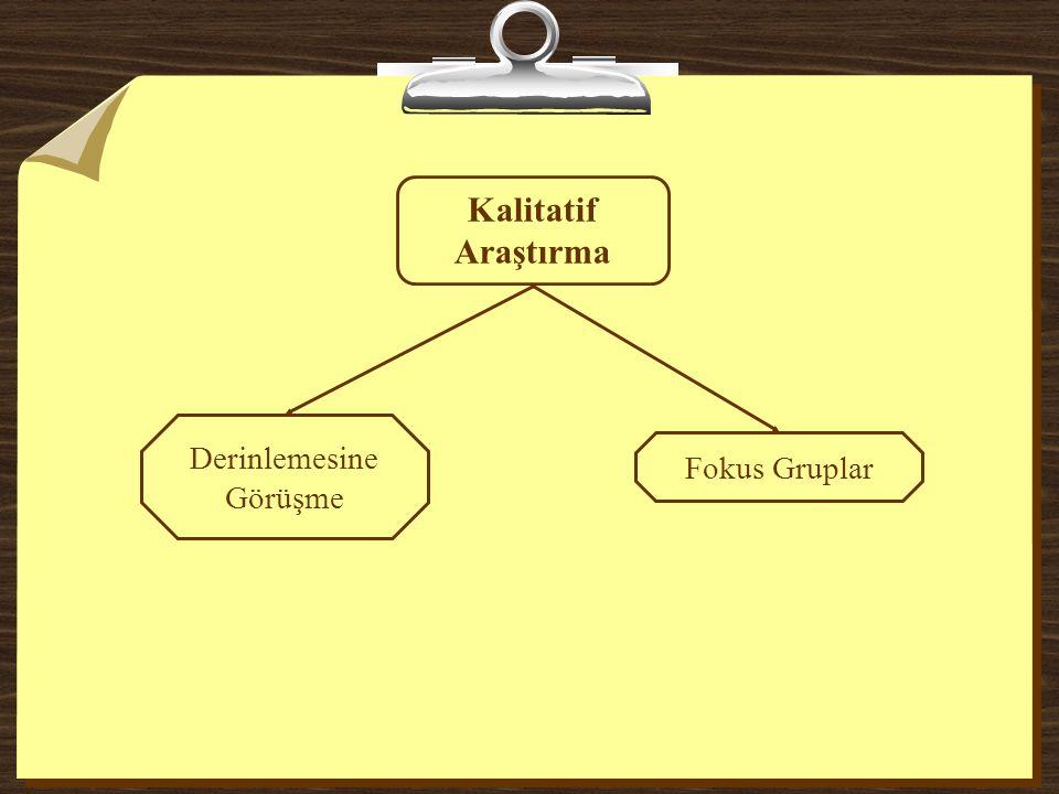 Kalitatif Araştırma Derinlemesine Görüşme Fokus Gruplar
