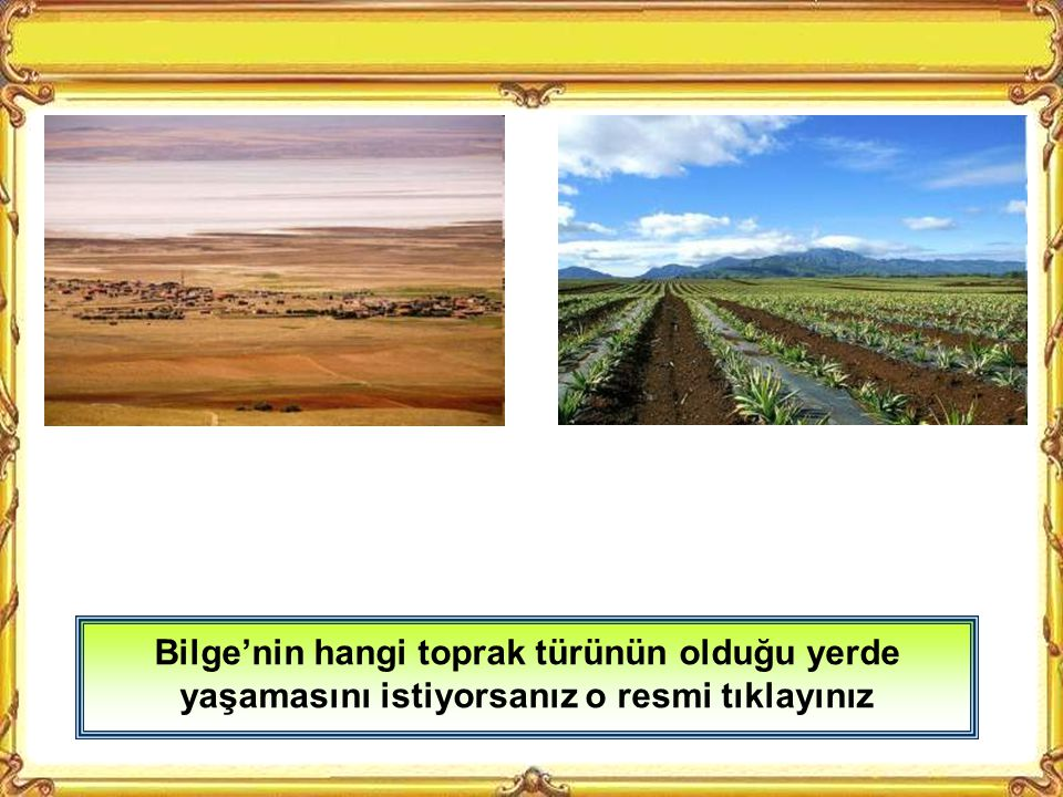 Düz ve yükseltisi az olan yerler nüfus bakımından yoğun yerlerdendir Çukurova düzlüğünde kurulan Adana'da nüfus yoğundur.