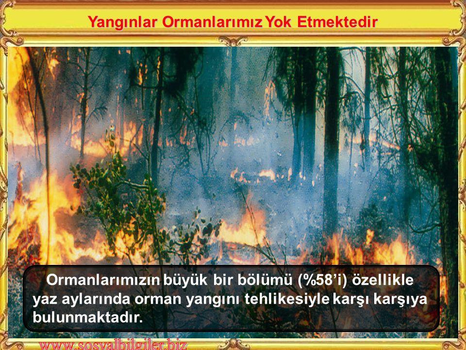 Ormanlarımızın büyük bir bölümü (%58'i) özellikle yaz aylarında orman yangını tehlikesiyle karşı karşıya bulunmaktadır.
