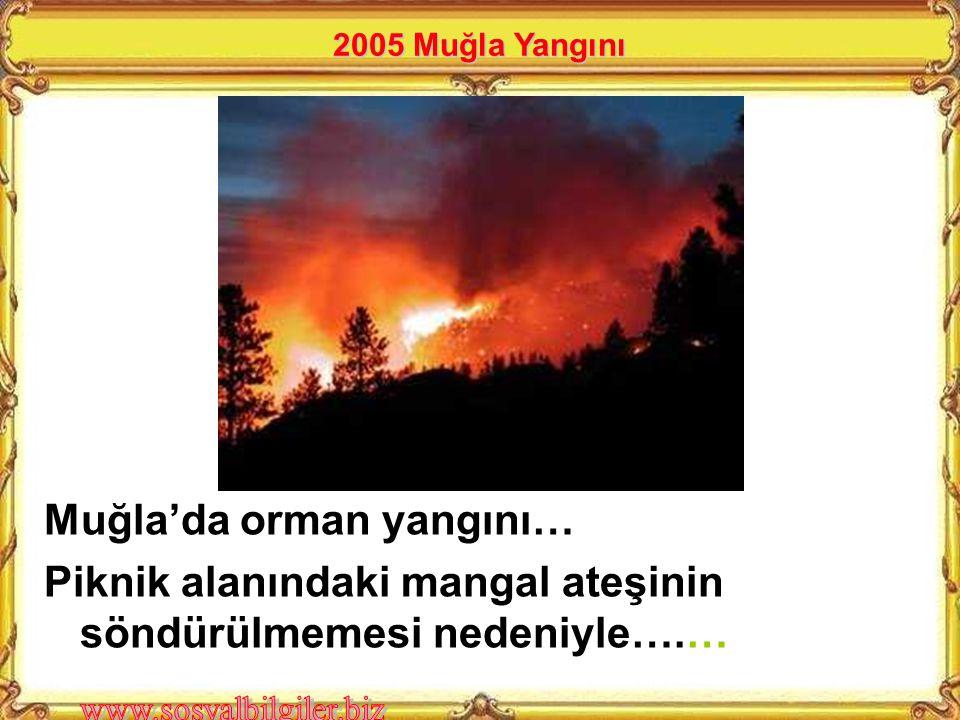 Muğla'da orman yangını… Piknik alanındaki mangal ateşinin söndürülmemesi nedeniyle….… 2005 Muğla Yangını