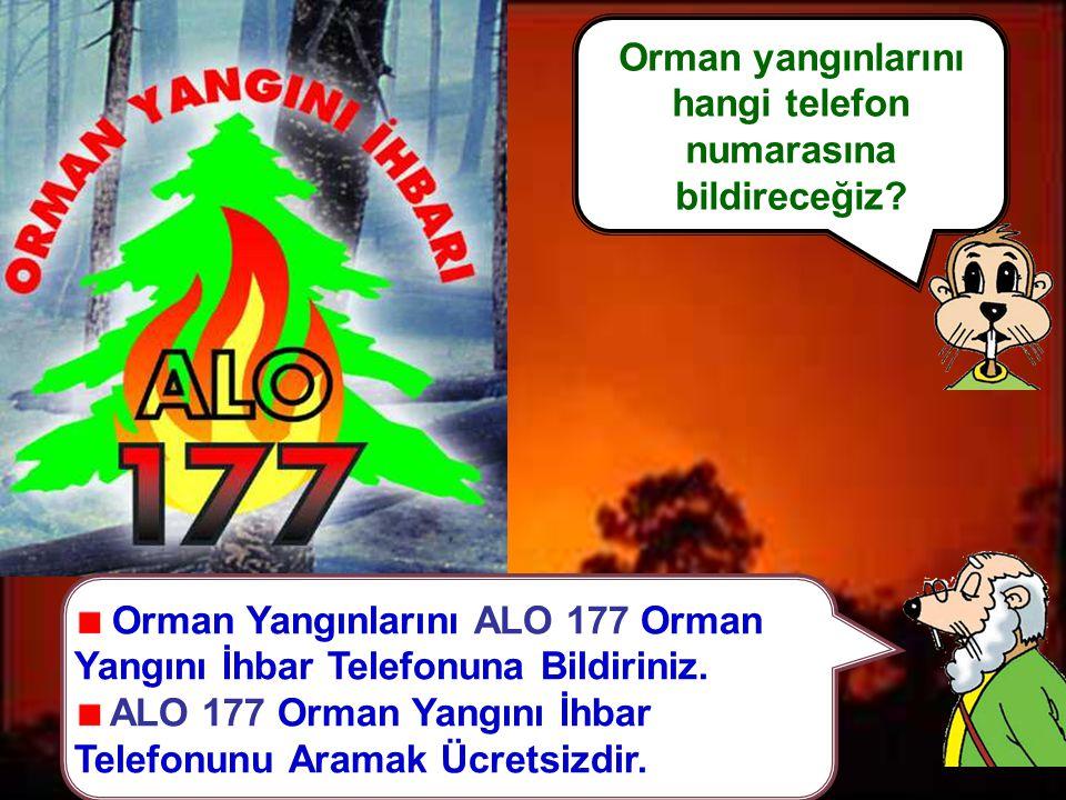 Orman Yangınlarını ALO 177 Orman Yangını İhbar Telefonuna Bildiriniz.