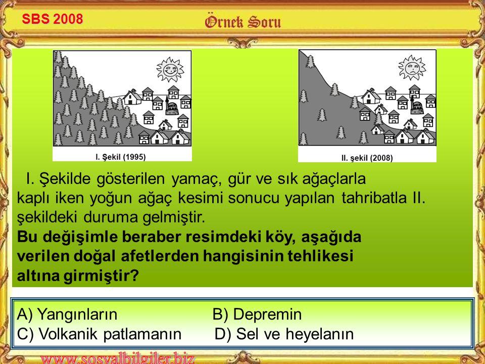 A) Yangınların B) Depremin C) Volkanik patlamanın D) Sel ve heyelanın I.