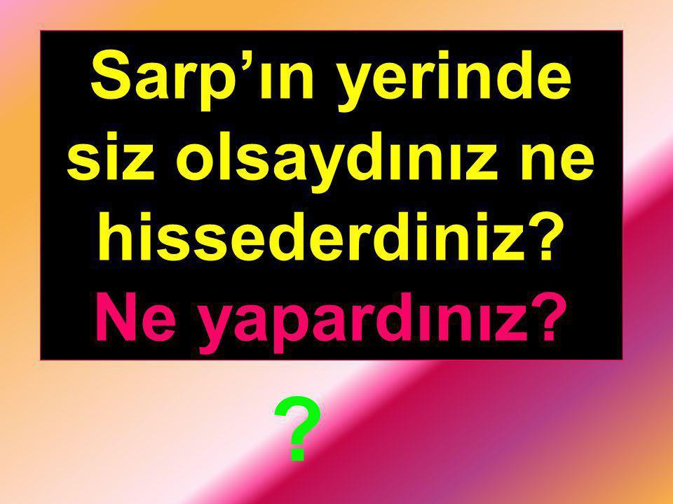 Toplumsal yaşamın aynası konumundaki Türk gazeteciliği, 1860 yılında yayınlanan Tercüman-ı Ahval gazetesi ile başlamıştır.