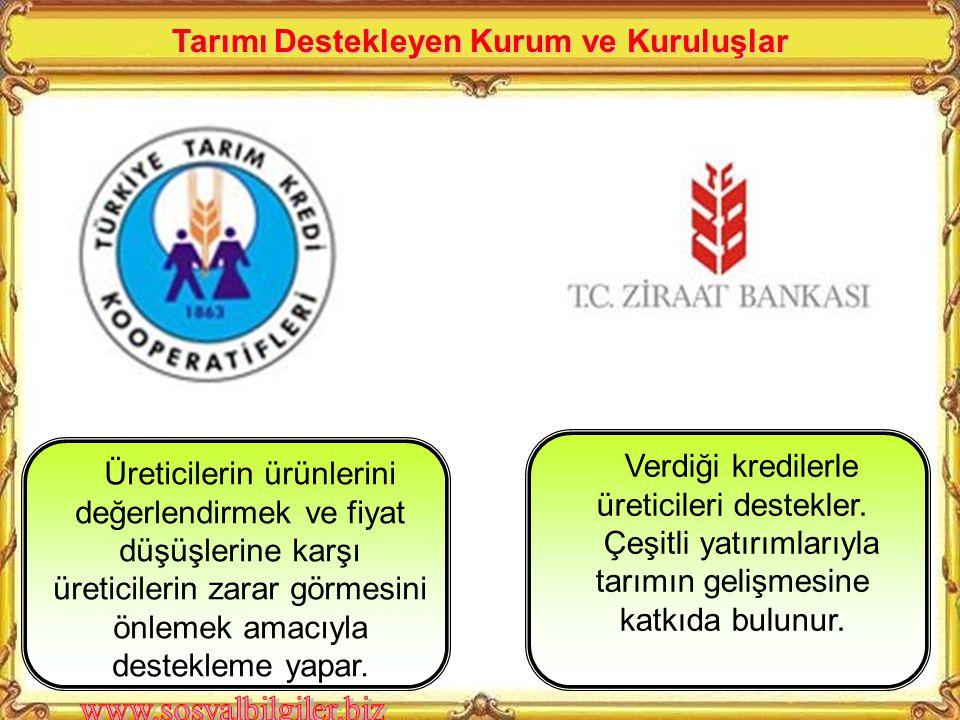 Toprak Mahsülleri Ofisi Çukobirlik Çaykur Tariş Fiskobirlik Ziraat Bankası Devlet Üretme Çiftlikleri Topraksu Teşkilatı Tarım Kredi Kooperatifleri Zir