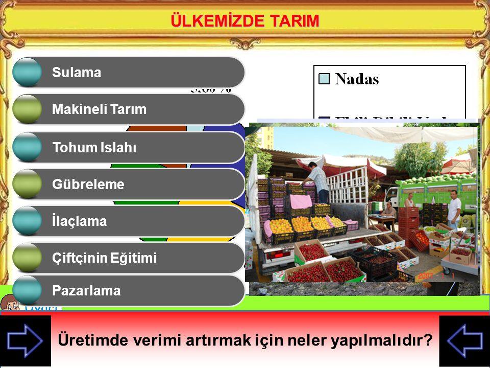 Ülkemizde bu kadar farklı tarım ürünlerinin yetişmesinin sebebi nedir? ÜLKEMİZDE TARIM Ülkemizde farklı iklimlerin ve toprak türlerinin olması tarım ü