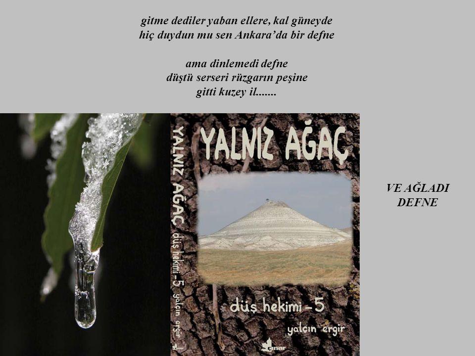düşebileceği ne bir soluk hava, ne bir kaşık temiz su, ne de bir karış toprak bulabildi ve bunalıma düştü cemre...