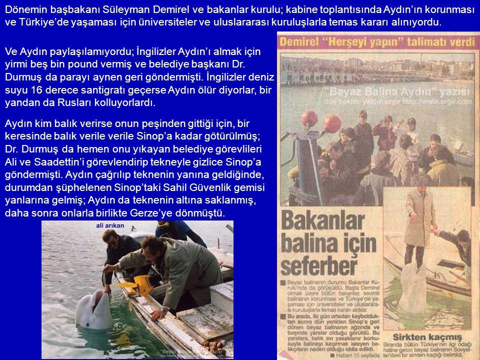 Dr. Durmuş iki elemanını görevlendirmişti; Ali Arıkan ve Saadettin Baş, onu belli aralıklarla sahilde bir yere götürüp araç yıkar gibi köpürte köpürte