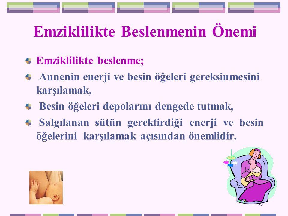 EMZİKLİLİK DÖNEMİ 21