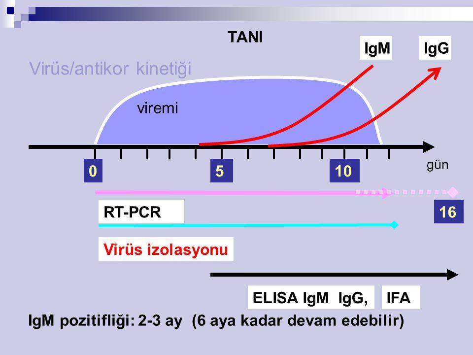 viremi 5 IgM RT-PCR ELISA IgM IgG,IFA Virüs/antikor kinetiği Virüs izolasyonu 010 IgG 16 IgM pozitifliği: 2-3 ay (6 aya kadar devam edebilir) gün TANI